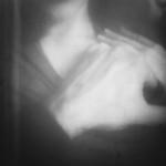 01 Laura-Manfredini-In omne tempus