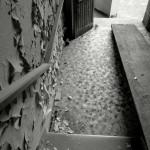 Trovo il vuoto a ogni gradino - Margherita Bertoldo